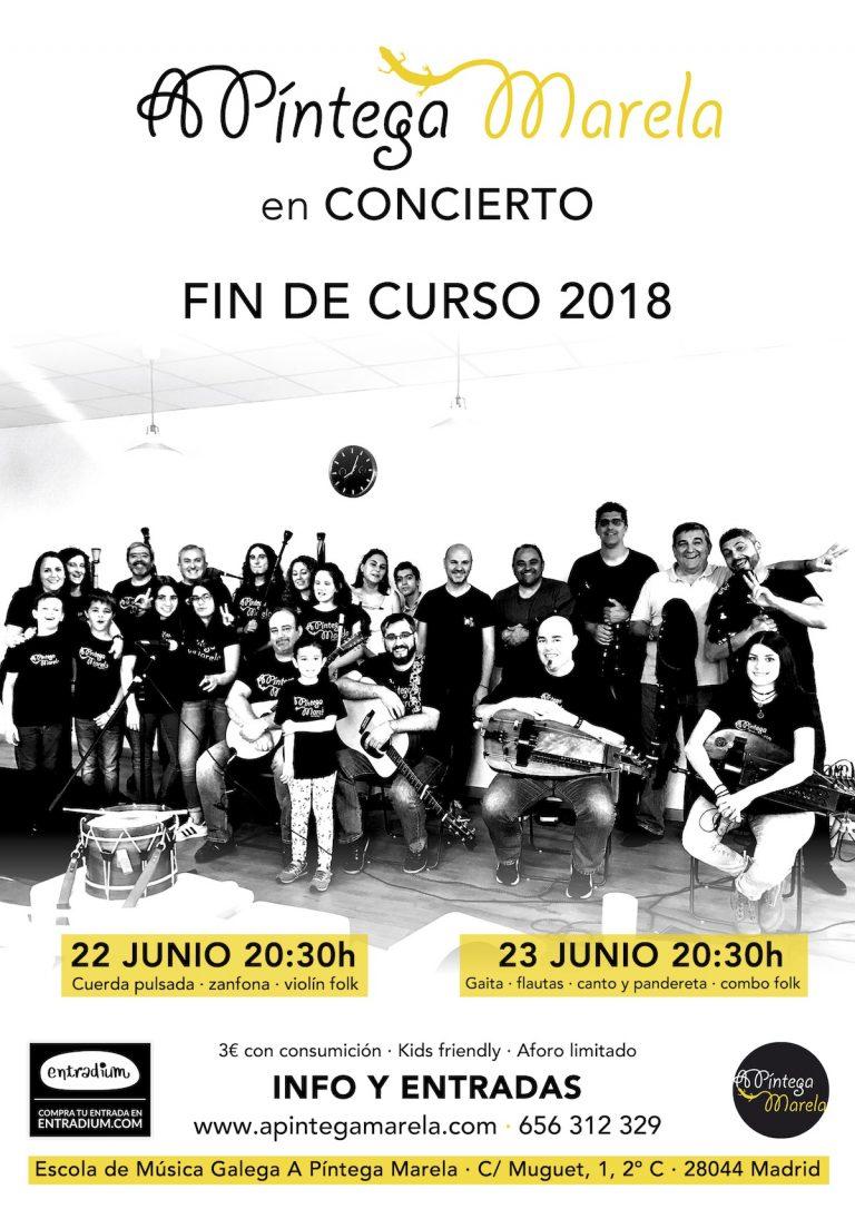 Concierto A Píntega Marela fin de curso 2018